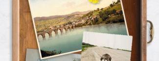 """Portada del libro """"Los orígenes"""", del escritor bosnio-alemán Saša Stanišić"""