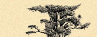 "Portada del llibre de poemes d'Anna Rossell ""Quadern malià / Cuaderno de Malí"""